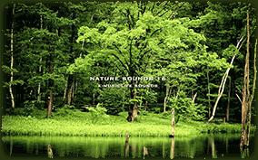ASMR环境声效合集专题页,收录环境声效作品,可以在线观看或下载收聽.ASMR环境声效音声作品归档列表
